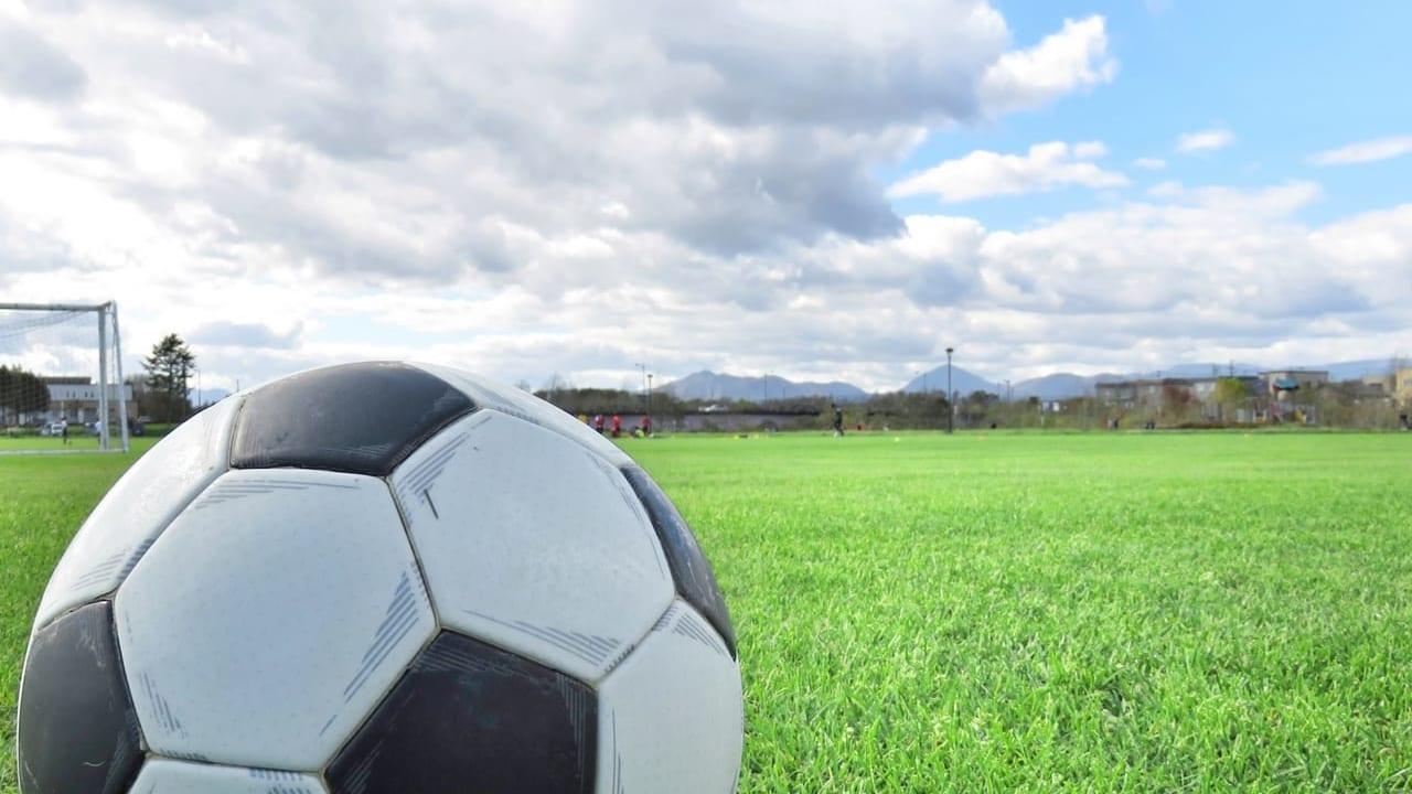 サッカーの参考画像